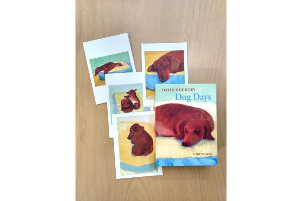 David Hockney Dog Days Notecards