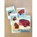 David Hockney Dog Days Notecards