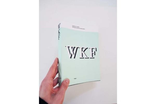 Wittgensteinova kniha faktů – Ladislav Čumba