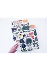Botanicum – Kathy Willisová, Katie Scottová