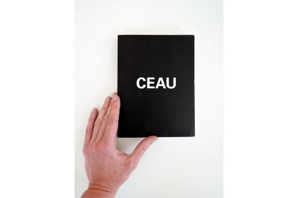 CEAU – Christoph Büchel, Giovanni Carmine