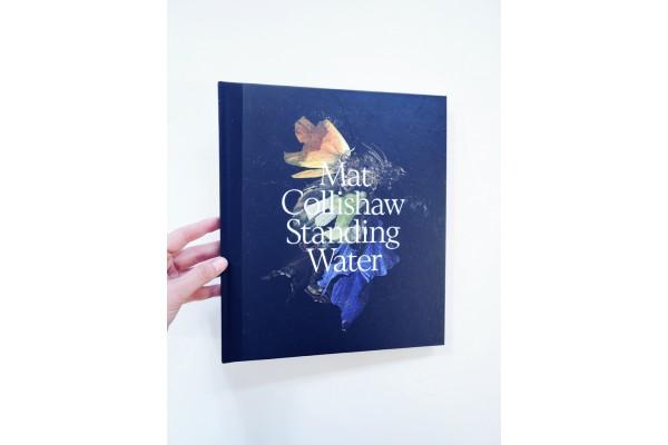 Standing Water – Mat Collishaw