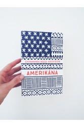 Amerikána – Chimamanda Ngozi Adichieo
