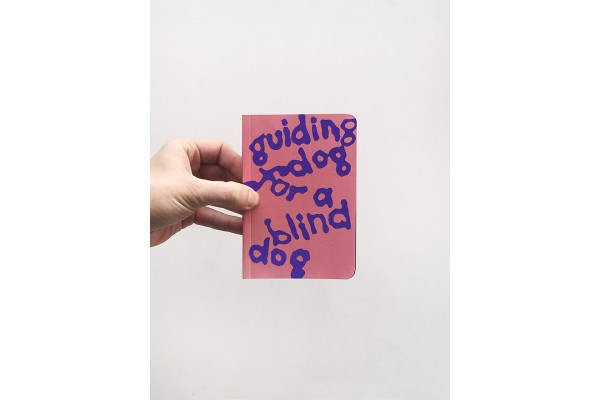 A guiding dog for a blind dog – Lukáš Hofmann, Nat Marcus