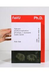 Vybrané konceptuální přístupy v současné české malbě – Petr Dub