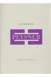 Antoine Pevsner / Dopisy bratrovi