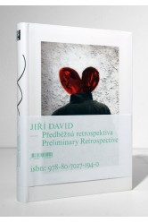Jiří David – Předběžná retrospektiva