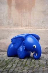 Slon - Fatra