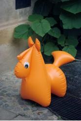 Koník - Fatra